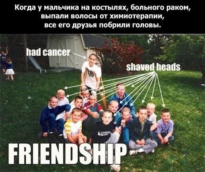Истинный смысл дружбы (19 фото)