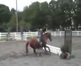 Подборка жестких падений с лошадей