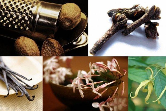 10 фактов о самых полезных запахах (10 фото)