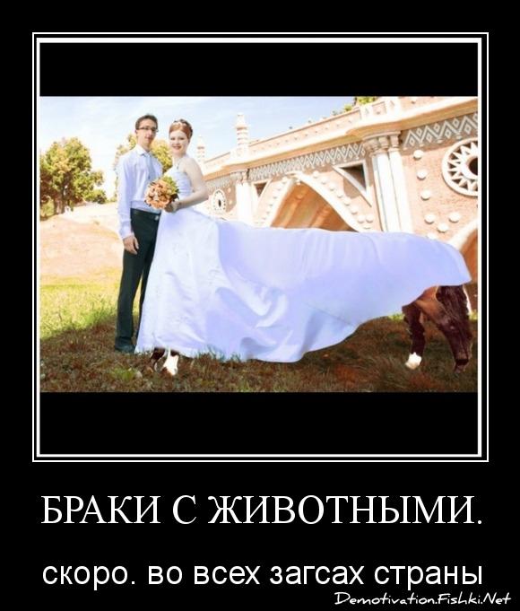 Браки с животными.