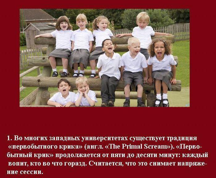 Интересные студенческие традиции разных стран (10 фото)