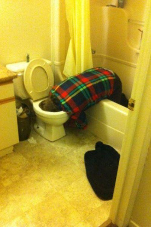 Фотожесть ванная комната, напился, нелепая поза, прикол, туалет