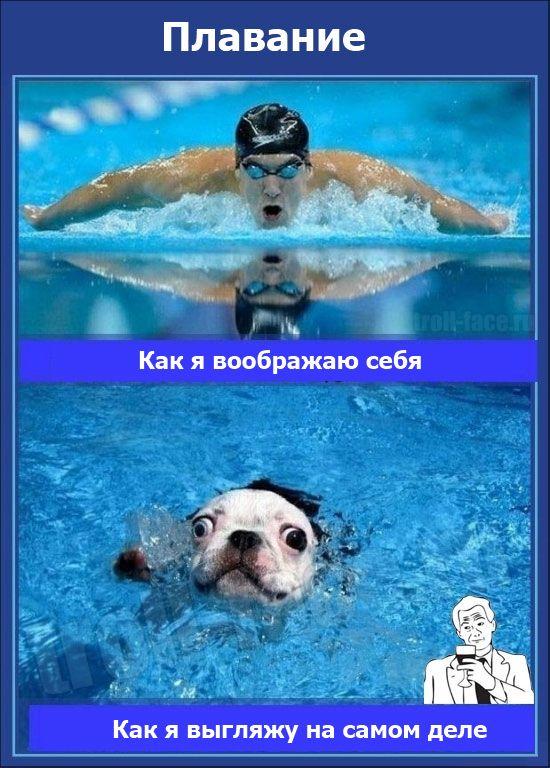 картинки с пловцами в бассейне прикольные ошибки, включая проблемы
