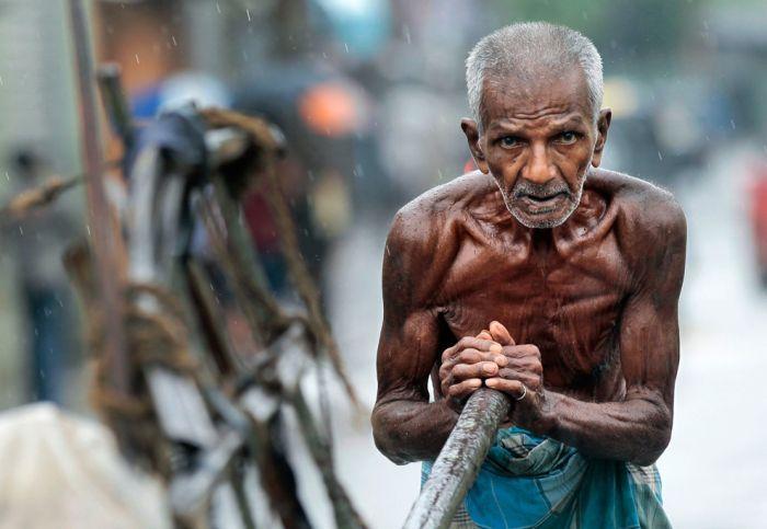 Фотографии, на которые невозможно смотреть равнодушно