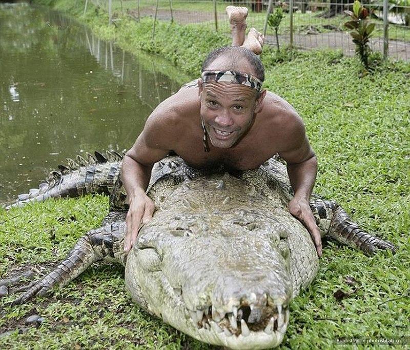 Фотоприкол онлайн бесплатно аллигатор, дрессировщик, крокодил, круто