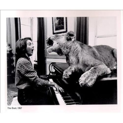 Фотография кошка, лев, музыка, поет, рояль, фортепиано