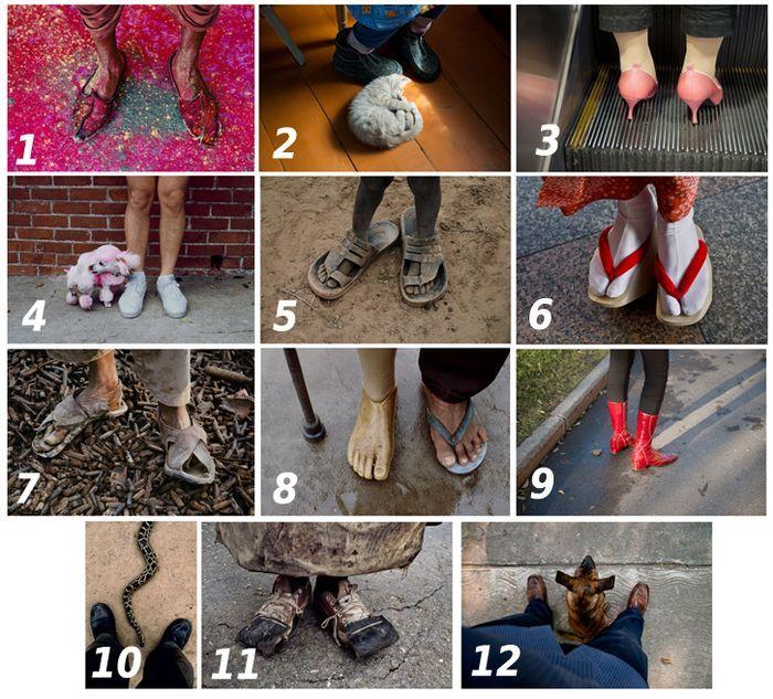 ноги, фото, загадка