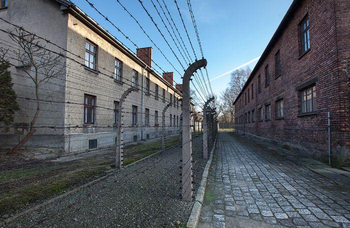 освенцим, концлагерь, лагерь смерти, жесть, нацизм, польша, узники,