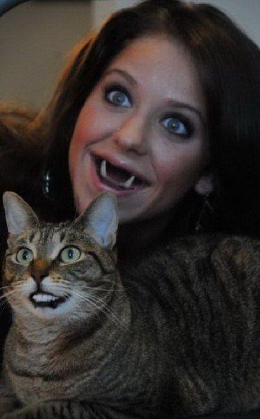 Юмор зубы, улыбка, хозяйка и кот, челюсти