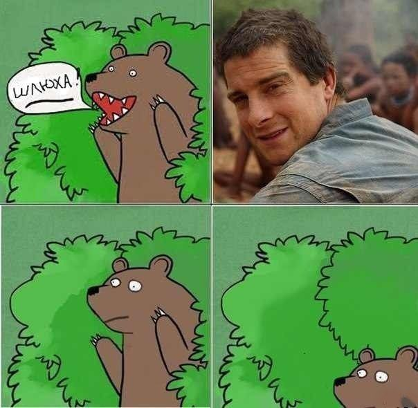Шикарное фото из куста, медведь, мем, мужик