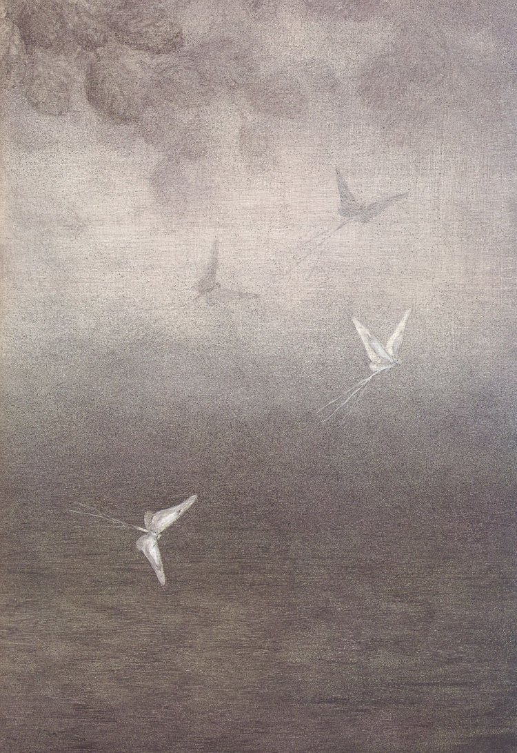 Ёжик в тумане (50 фото)
