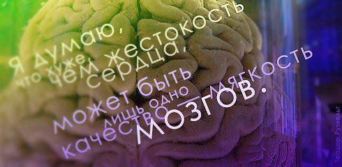 Цитаты известных личностей (41 картинка)