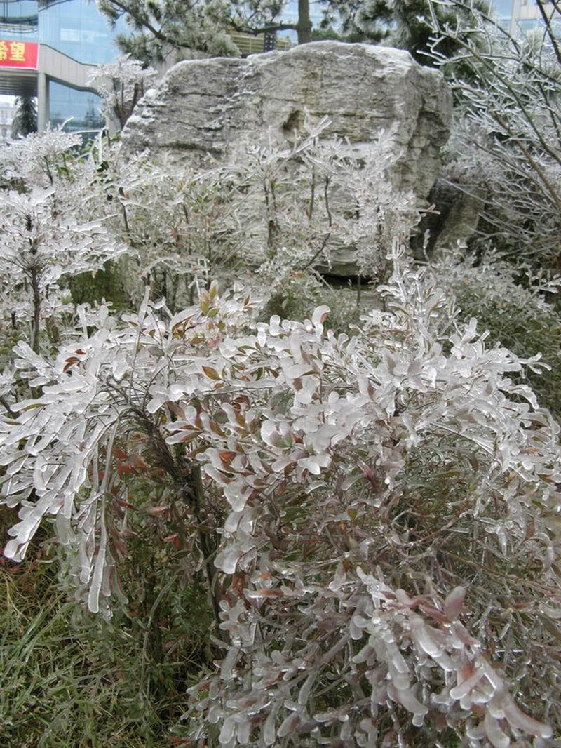 http://de.fishki.net/picsw/032008/28/ice_rain/010_ice_rain.jpg