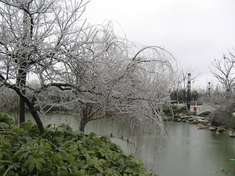 http://de.fishki.net/picsw/032008/28/ice_rain/016_ice_rain.jpg