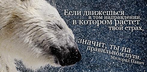 http://ru.fishki.net/picsw/032009/02/quote/005.jpg