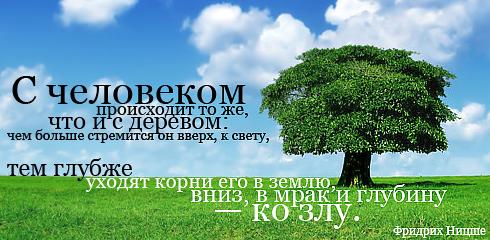 http://ru.fishki.net/picsw/032009/02/quote/008.jpg