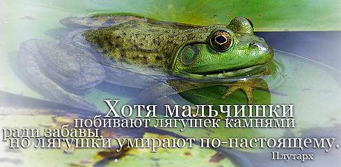 http://ru.fishki.net/picsw/032009/02/quote/013.jpg