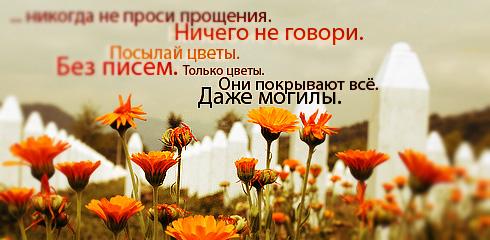 http://ru.fishki.net/picsw/032009/02/quote/023.jpg