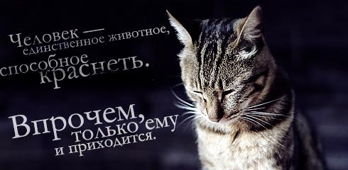 http://ru.fishki.net/picsw/032009/02/quote/025.jpg