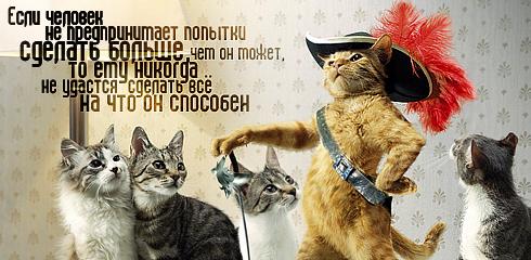 http://ru.fishki.net/picsw/032009/02/quote/037.jpg
