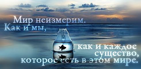http://ru.fishki.net/picsw/032009/02/quote/047.jpg