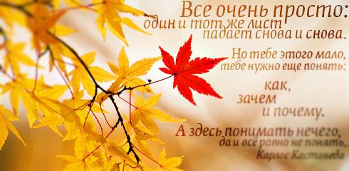 http://ru.fishki.net/picsw/032009/02/quote/049.jpg