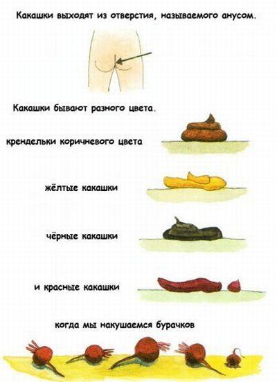http://ru.fishki.net/picsw/032009/04/kaka/002.jpg
