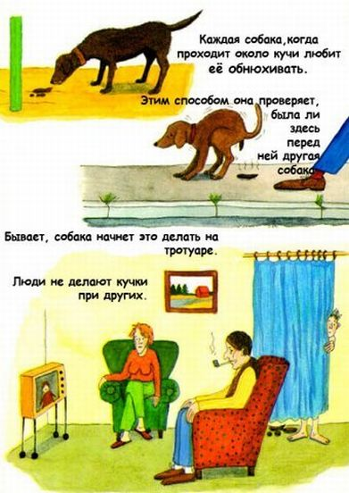 http://ru.fishki.net/picsw/032009/04/kaka/007.jpg
