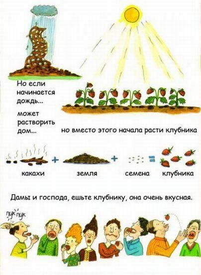 http://ru.fishki.net/picsw/032009/04/kaka/009.jpg