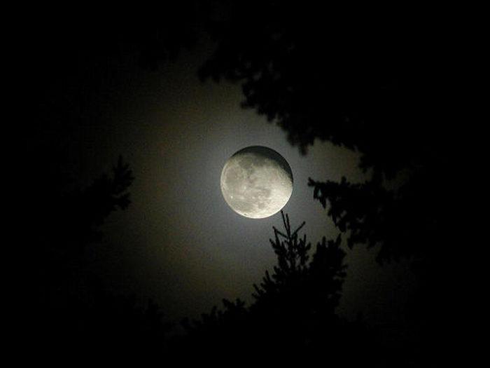 Потрясающие фотографии луны (13 фото)