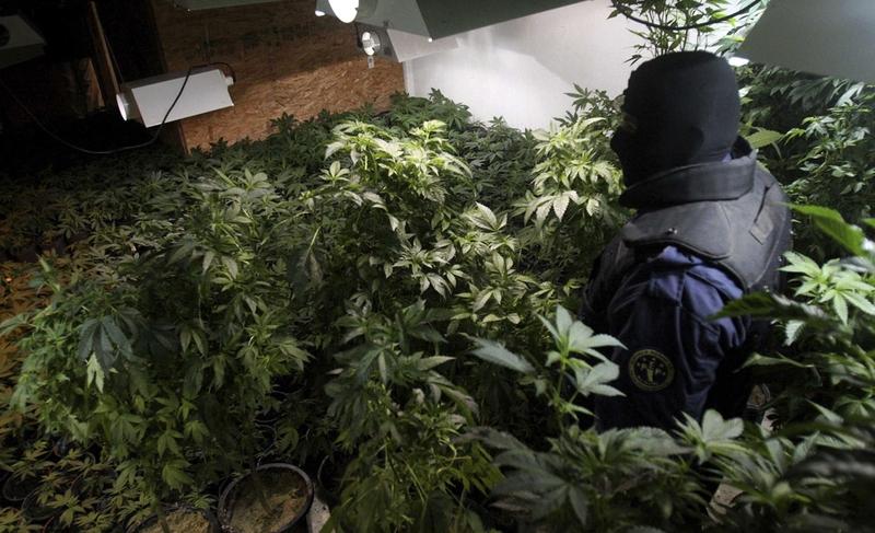 Нарко-войны в Мексике (34 фото)
