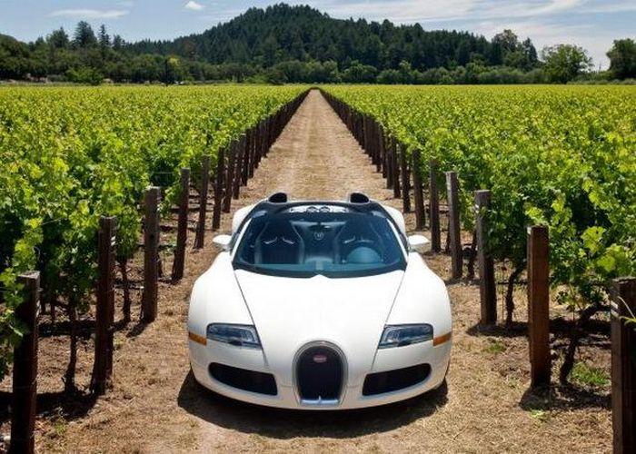 Bugatti Veyron Grand Sport самый дорогой кабриолет (31 фото)