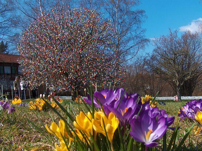 Пасхальное дерево Фолькера Крафта(7 фото)