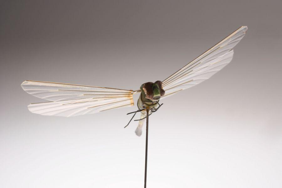 Insectohopter - разработан ЦРУ в 1970 году микро беспилотный летательный аппарат, иммитирующий насекомое.
