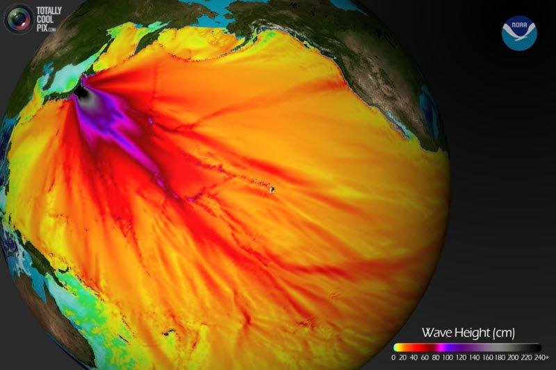 Карта, предоставленная Национальной океанической и метеорологической администрацией Соединенных Штатов Америки показывает приблизительную активность волны цунами после мощного землетрясения в 8,9 баллов, случившегося в Японии 11 марта 2011 года. Тысячи людей, живущих на тихоокеанском побережье в Северной и Южной Америке были охвачены паникой, когда цунами достигла этих берегов, к счастью, не причинив значительного ущерба.