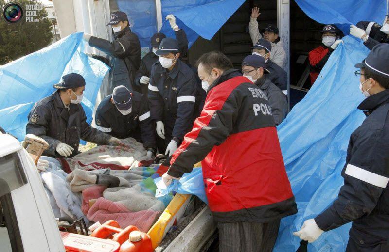 Полицейские переносят тела погибших в передвижной морг в гимнастическом зале в городе Натори, префектура Мияги, 12 марта 2011 года.