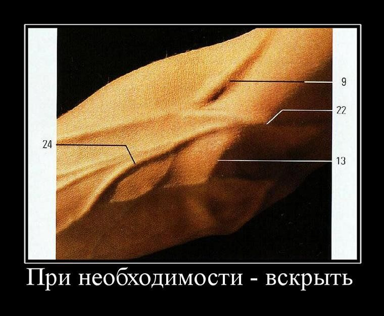 Демотиваторы, часть 115. (107 фото)