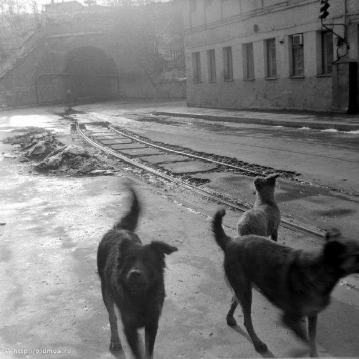 10. Московский виадук на Сыромятниках. Фото 1980-1987 года: