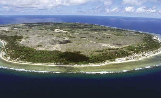 Удивительно, но это не США. Самые толстые люди на планете живут в Науру (в процентах на душу населения) - это небольшой остров в южной части Тихого океана. Население этой нации менее 10 000 человек, большинство из которых страдают от избыточного веса. Рост ожирения начался после ввоза западных продуктов. Не удивительно - сампое популярное блюдо в этой стране - кола и жаренная курица. Которые туда поставляет США. Так все таки США виноваты! Ок.