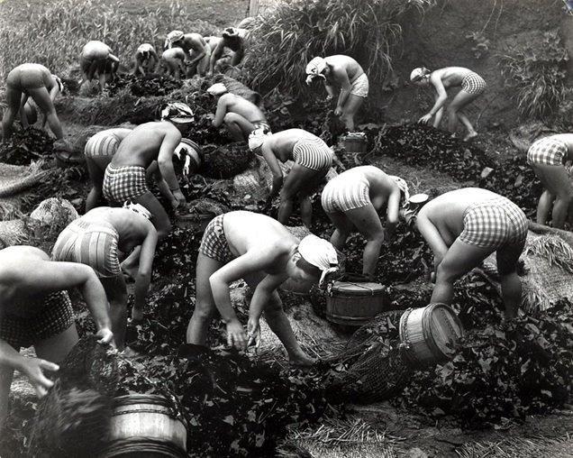 Ама, девушки - ловцы жемчуга (33 фото)