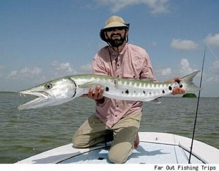 Самые необычные рыбы (31 фото)