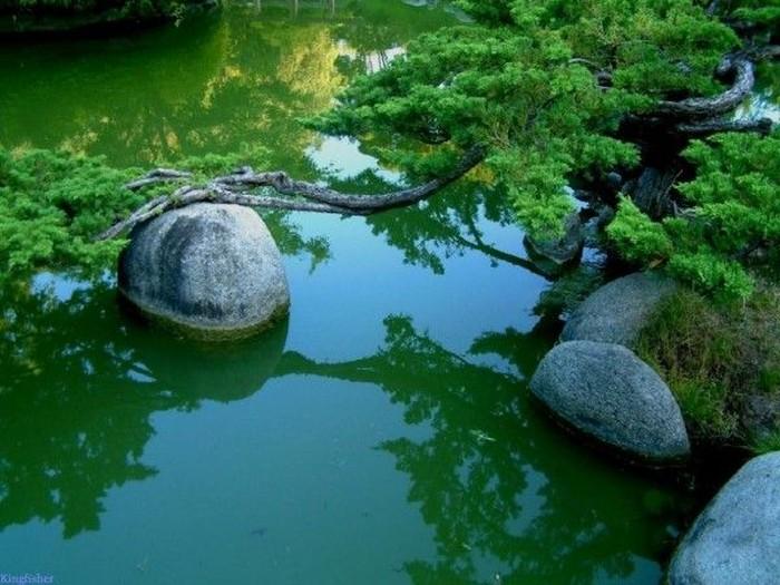 Удивительный японский сад с декоративными горками (13 фото)