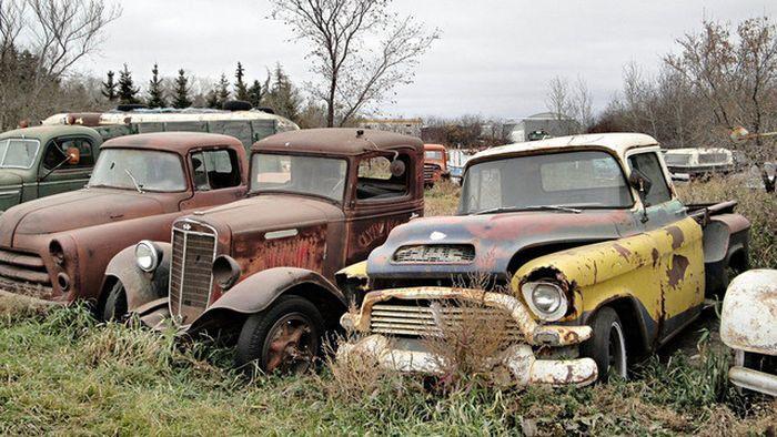 Свалка старых грузовиков и автобусов в Канаде (6 фото)