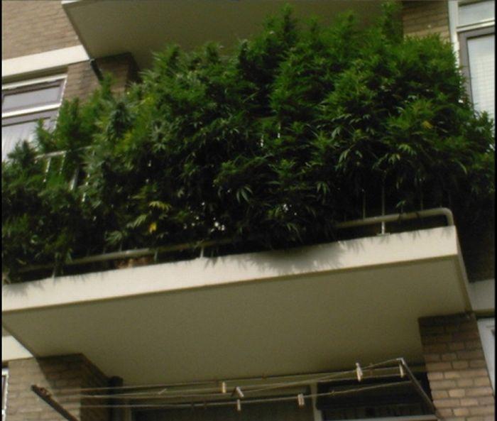 А какие балконы в Голландии? (2 фото)