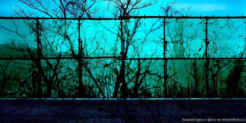 1. «Я не говорю, что хочу фотографировать неинтересные вещи, – говорит мистер Сталлер. – Просто так случилось, что меня привлекают именно такие». Обычно так и бывает.<br>  Ограда из зеленой сетки (Green Mesh Fence)<br>  Япония, 2004 год.