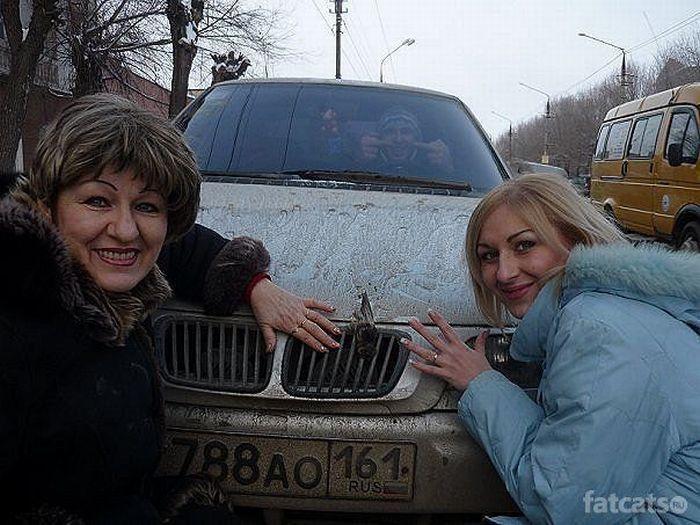 Провинциальные гламурные девчонки (69 фото)