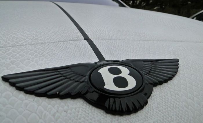 Bentley Continental GT в змеиной пленке от ателье Dartz (6 фото)