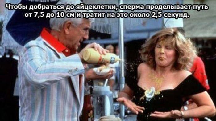 Интересные факты о сексе в современной росии
