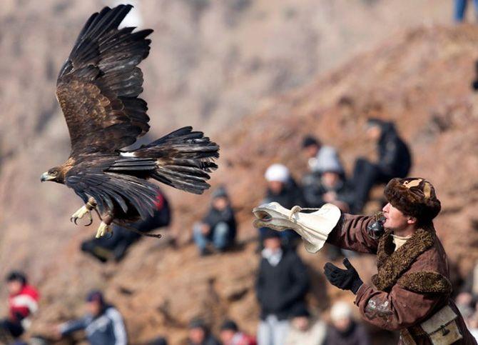 La caza con águilas en Kazajistán 10
