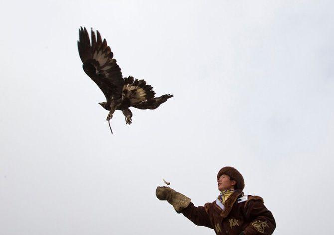 La caza con águilas en Kazajistán 15